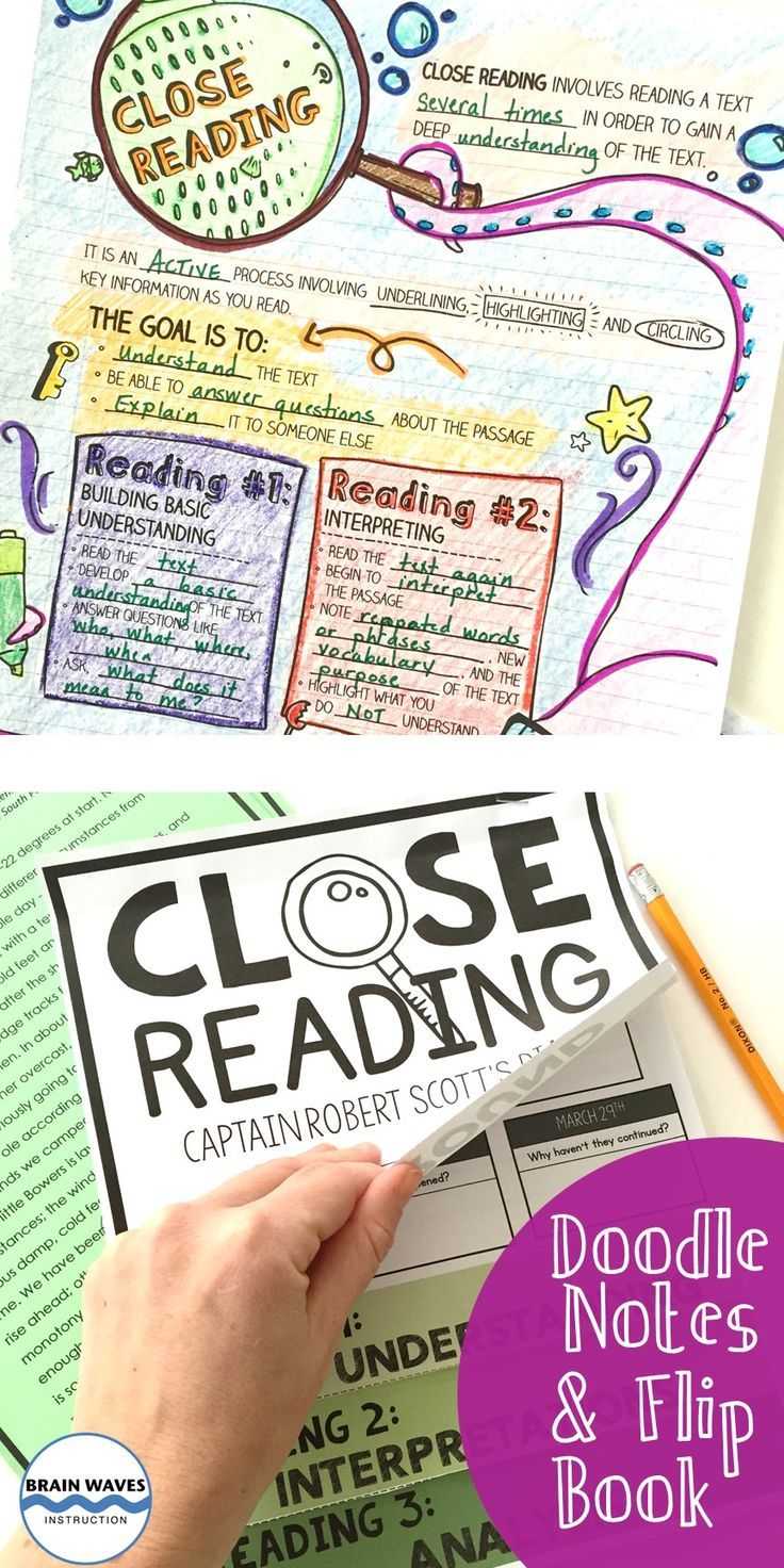 Close Reading Doodle Notes and Interactive Flip Book