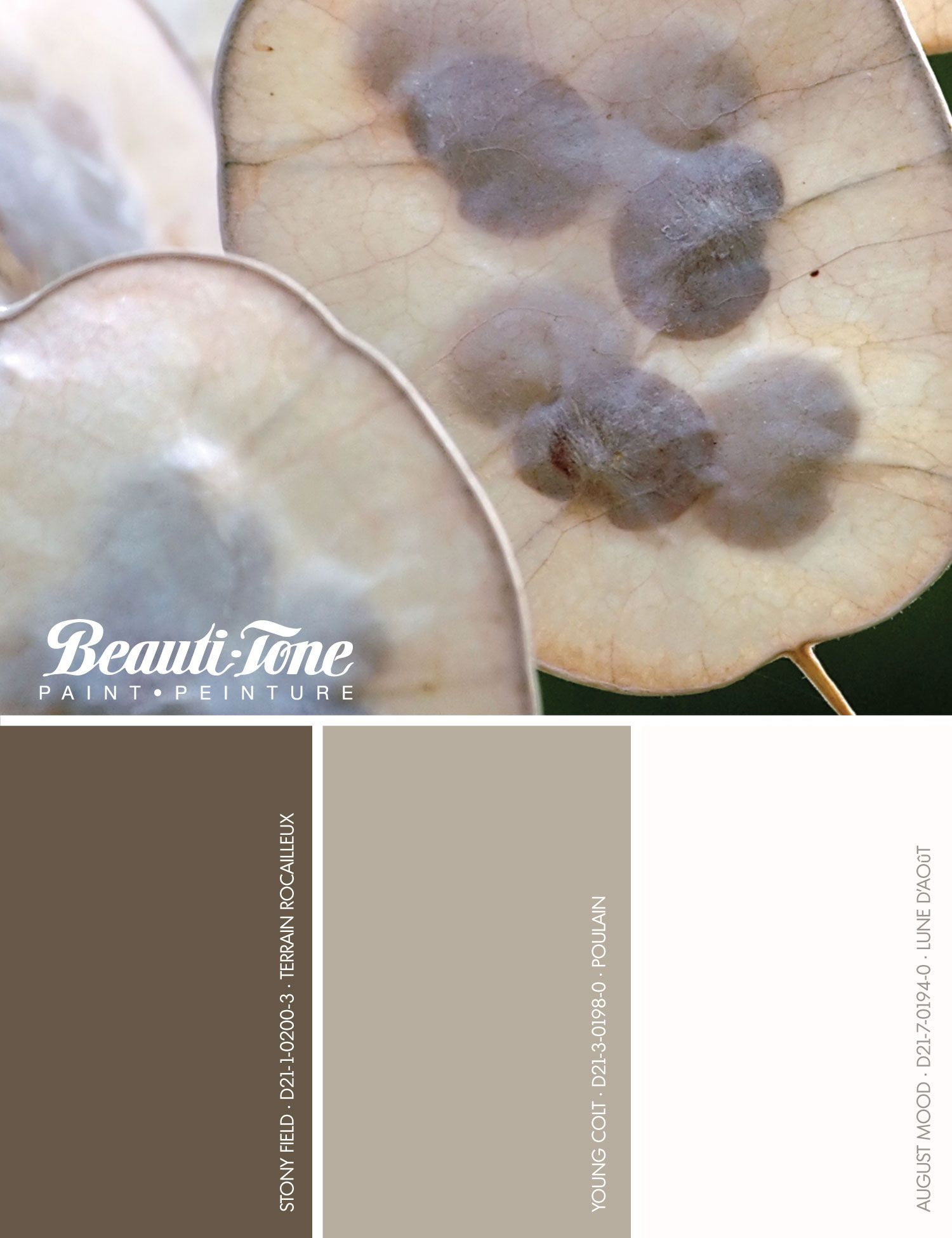nature seeds our imagination with an inspired palette of rh pinterest com Red Carpet Living Room Designs Living Room Quilts