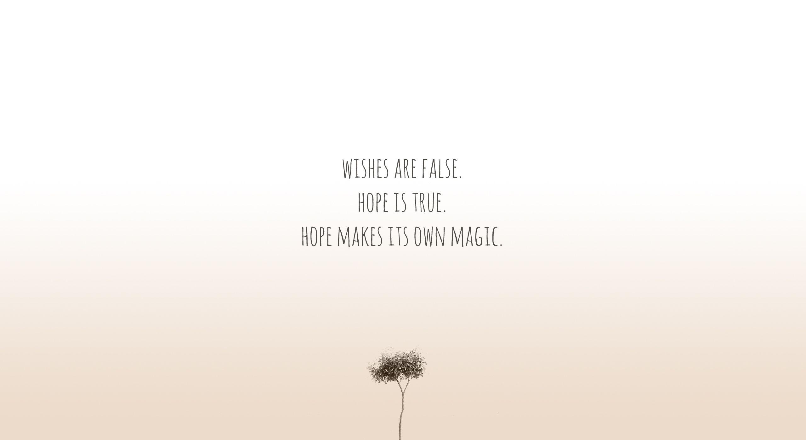 Desejos são falsos. A esperança é verdadeira. A esperança faz a