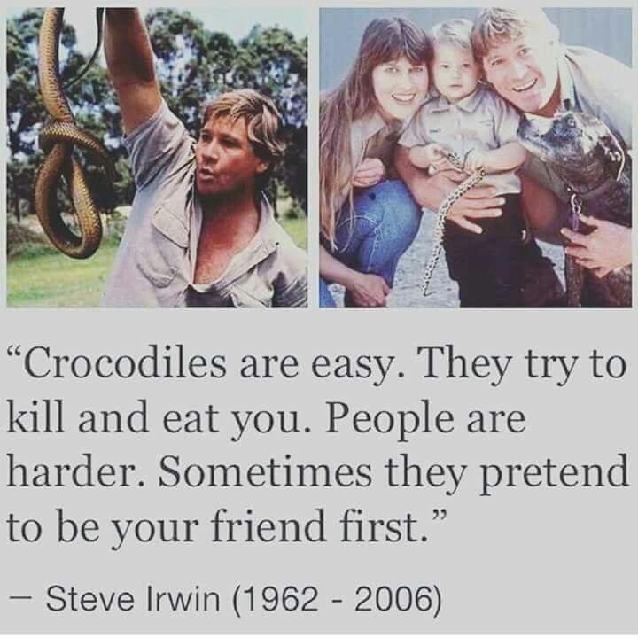 Steve Irwin Quote Morbid Humor Steve Irwin That One Friend