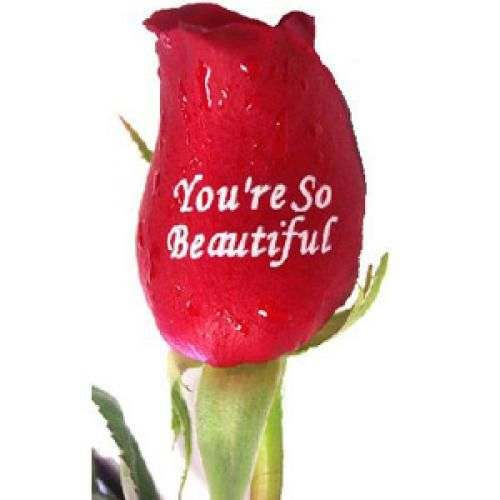 You Are So Beautiful Flowers For A Birthday Flowers Pretty