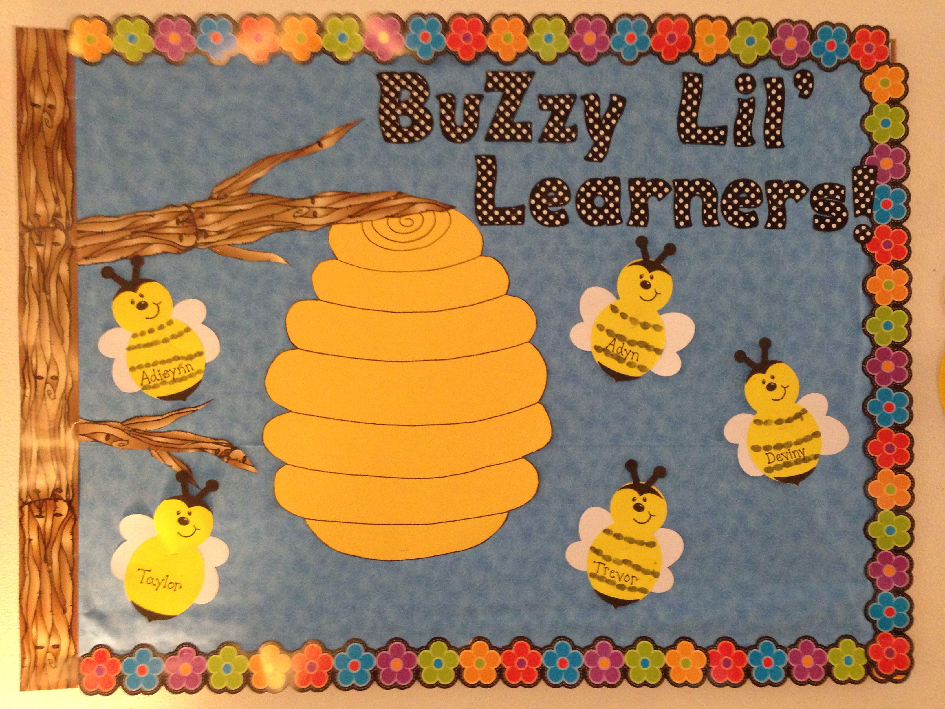 Preschool Bug And Garden Bulletin Board