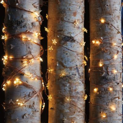 Star Micro LED Single Strand Lights Christmas Pinterest