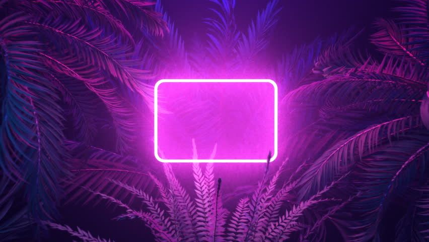Neon Glowing Rectangle Frame Appears Stock Footage Video
