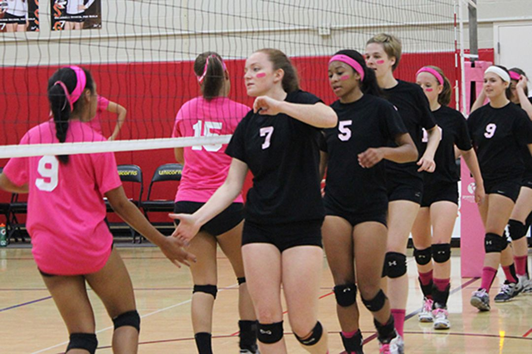 Dig Pink Columbus Academy vs. CSG Volleyball Game