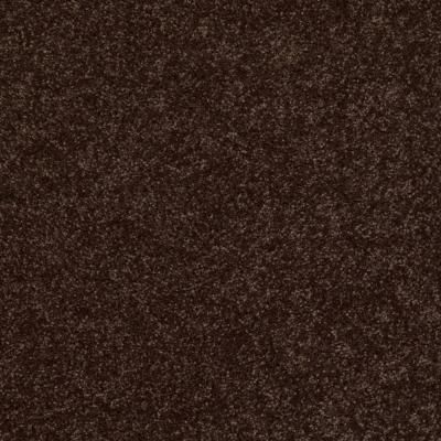 Trafficmaster Palmdale I Color Mountain Path 12 Ft Carpet Hdb5557705 The Home Depot Carpet Samples Types Of Carpet Shaw Carpet