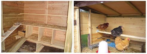 interieur poulailler bois google search pour nos poules pinterest poulailler bois. Black Bedroom Furniture Sets. Home Design Ideas
