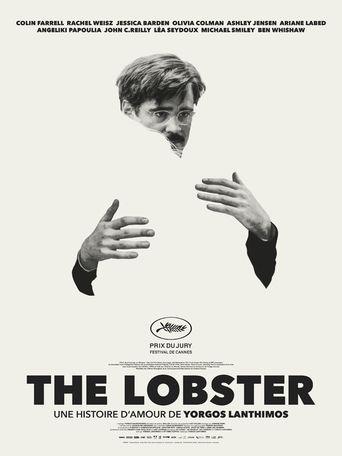 Lobster Stream