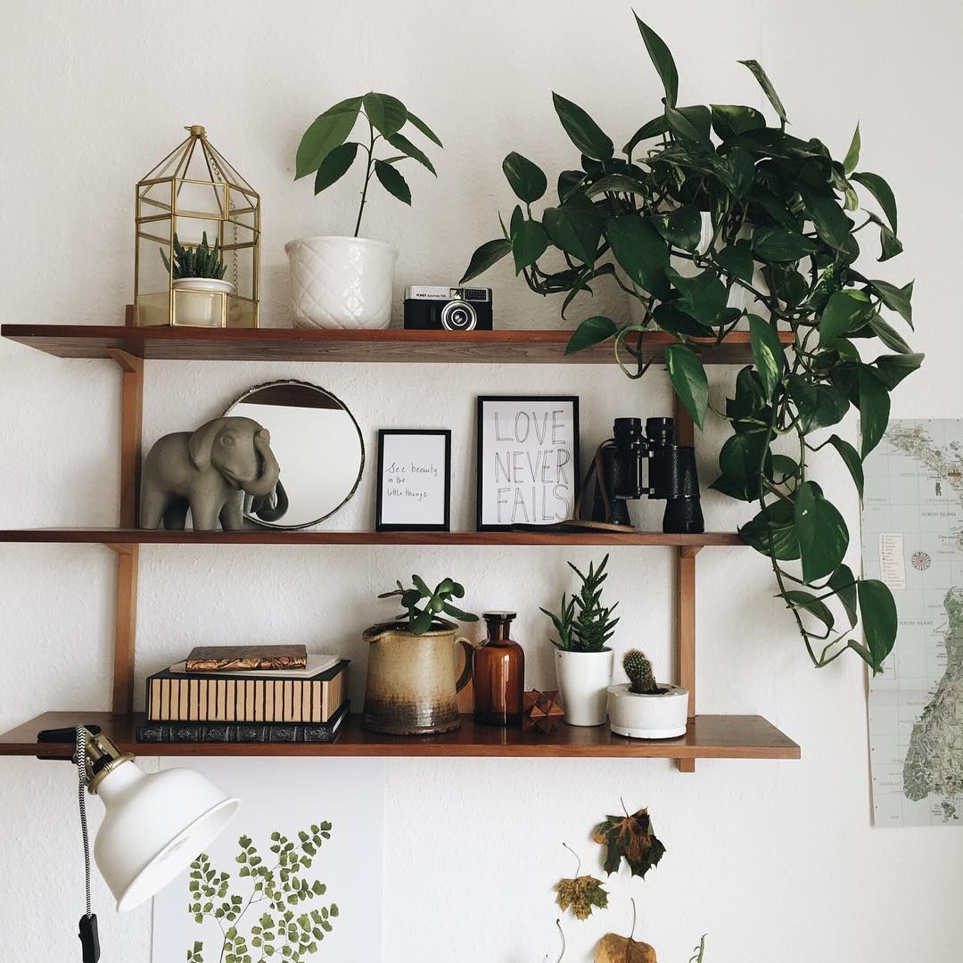 remarkable bedroom wall shelves ideas | Pin by Haley Dennis on s h e l f in 2019 | Shelves in ...