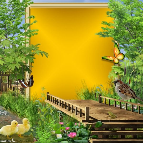 Nature Transparent Picture Frames Pictures Frame Clipart