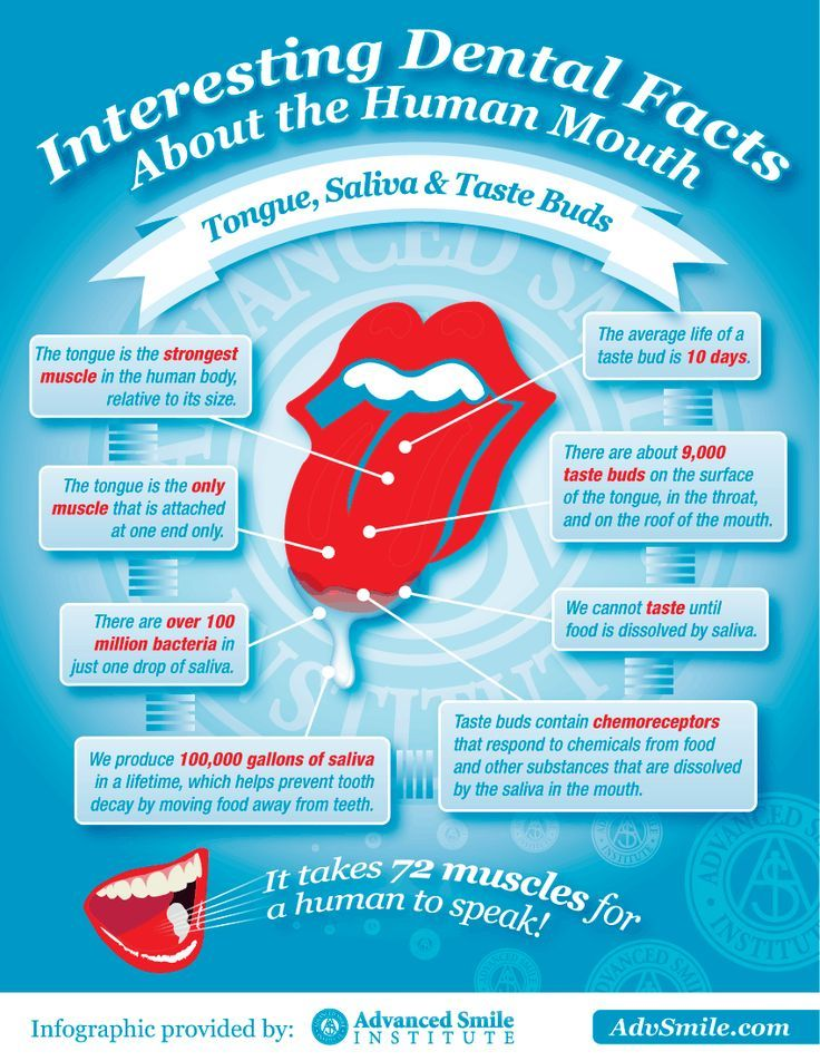 Interesting Dental Facts About The Human Mouth - infographic by Advanced Smile Institute. #dentalfacts #dentalhealth #dentalhealthtips #dentalhygiene #dentalhygienist #dentalcare #oralhealth #oralhygiene #teeth #dentalfacts