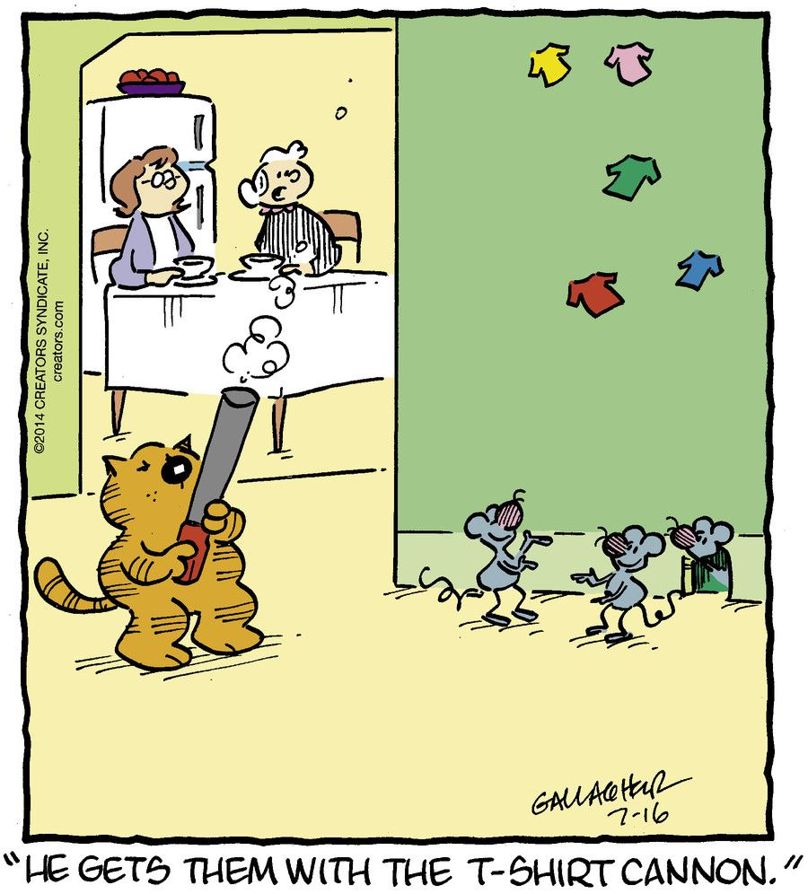 Uncategorized Mice Jokes he gets them with the t shirt cannon cat mouse jokes much humor