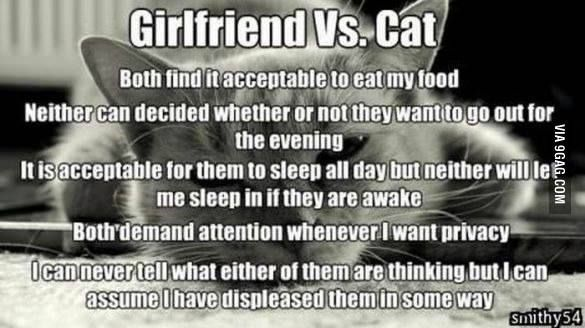 Girlfriend vs. Cat