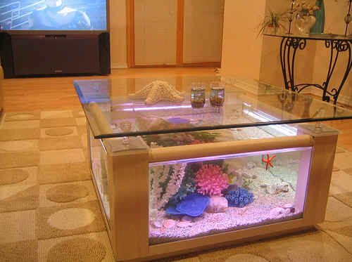 www4FishTankcom coffee table aquariums New York table