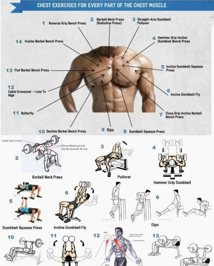 Quick Strategies In Strength Training Uncovered: 7 Basic Exercises For Chest Muscle Workout