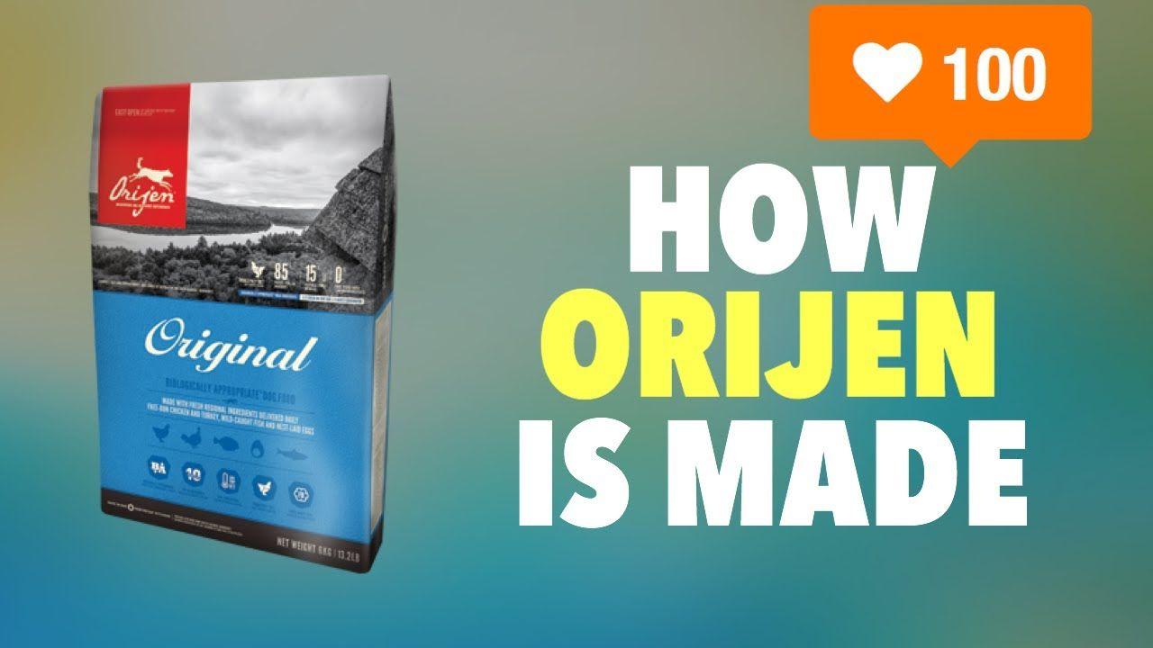 Watch How Orijen Pet Food is Made The Best Dry Food in