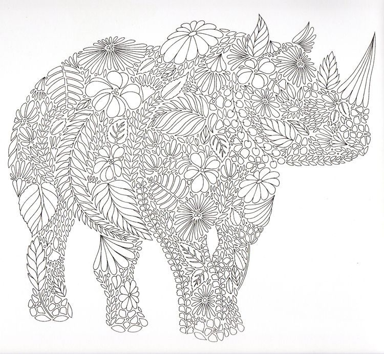 Rhino Colouring Page Animal Coloring Pages Adult Coloring Pages