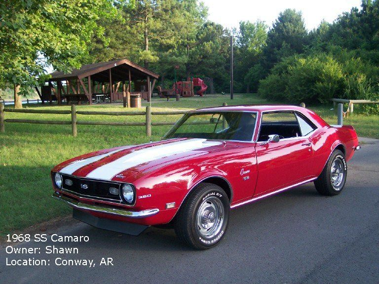 Camaro Pony Muscle Cars Camaros Cars Muscle Cars Chevy Muscle Cars