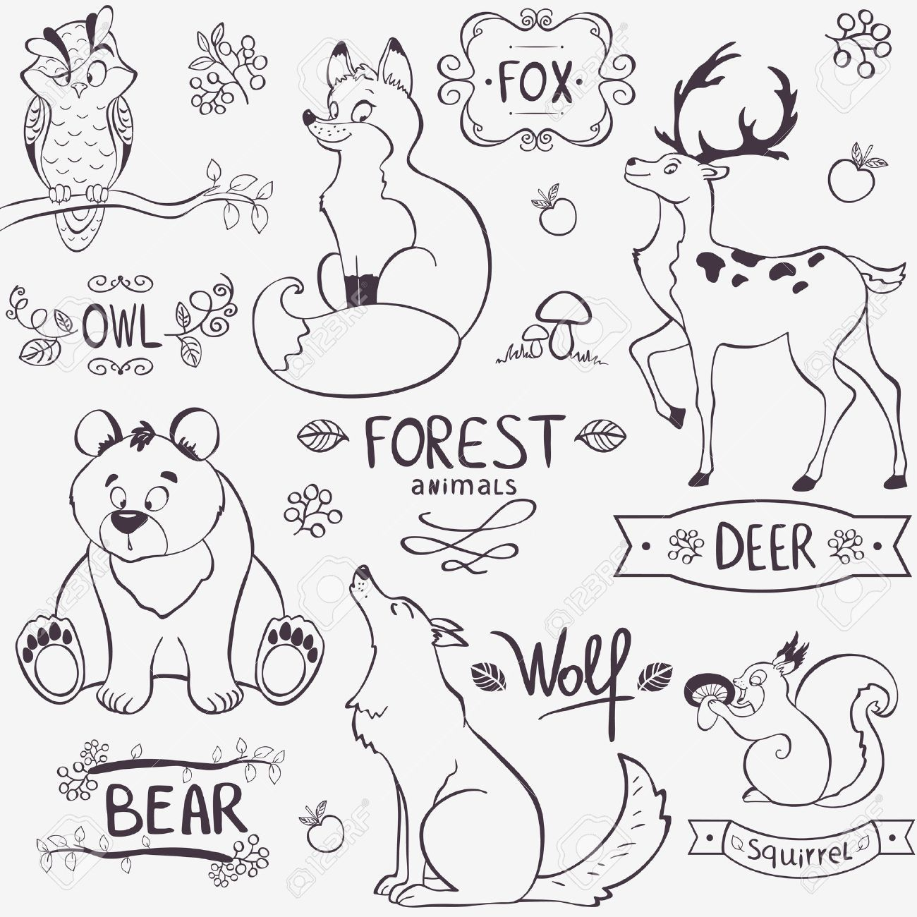 Illustration Set Of Cute Animals Of The Forest With Design Names Royalty Free Cliparts Vectors Forest Animals Illustration Animal Drawings Animal Silhouette