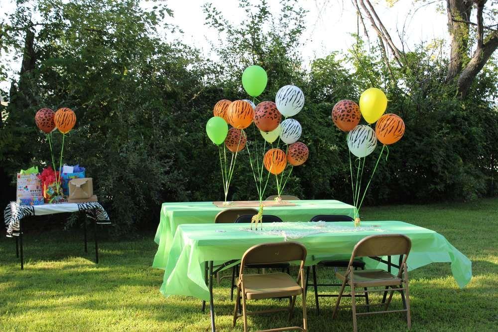 Wild Kratts Birthday Party Ideas