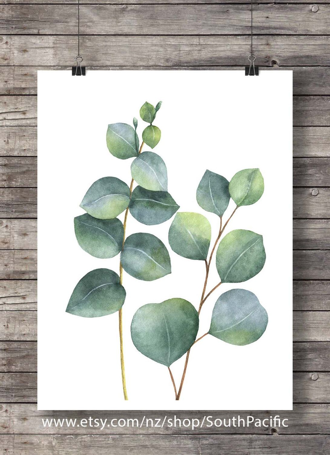 Eucalyptus Foliage Art Print Printable Art Pastel Watercolor Plant