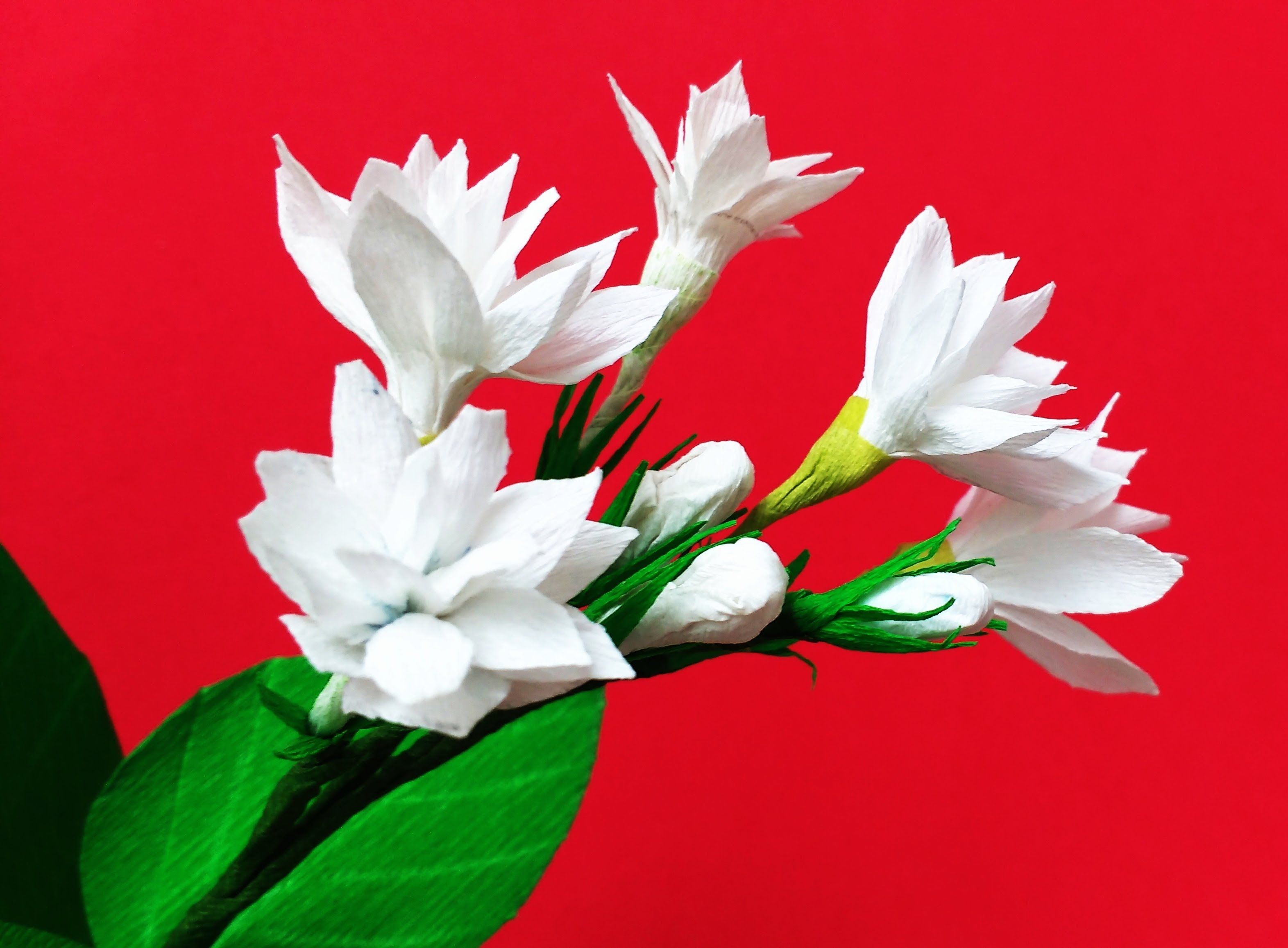 Paper flower mogra arabian jasmine flower 84 flores pretty in any color hyacinth makes a beautiful and stunning bouquet or flower arrangement this is an easy tutorial with stencils to make this gorgeous dhlflorist Image collections