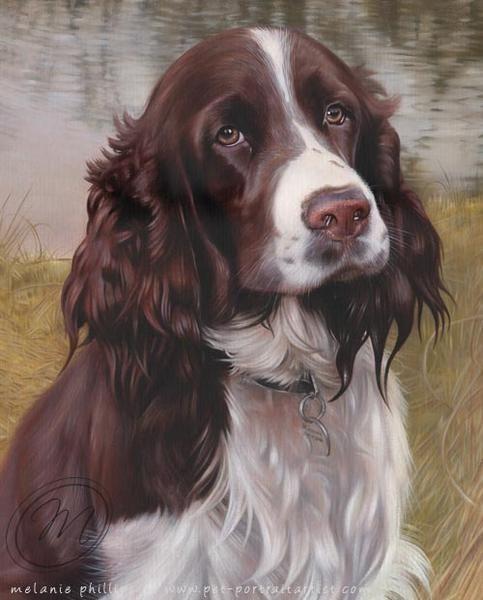 Oil Painting Springer Spaniels Springer Spaniel English Springer Spaniel Spaniel Art