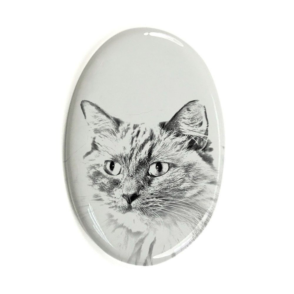 Gravestone oval ceramic tile with an image of a cat. Scottish Fold
