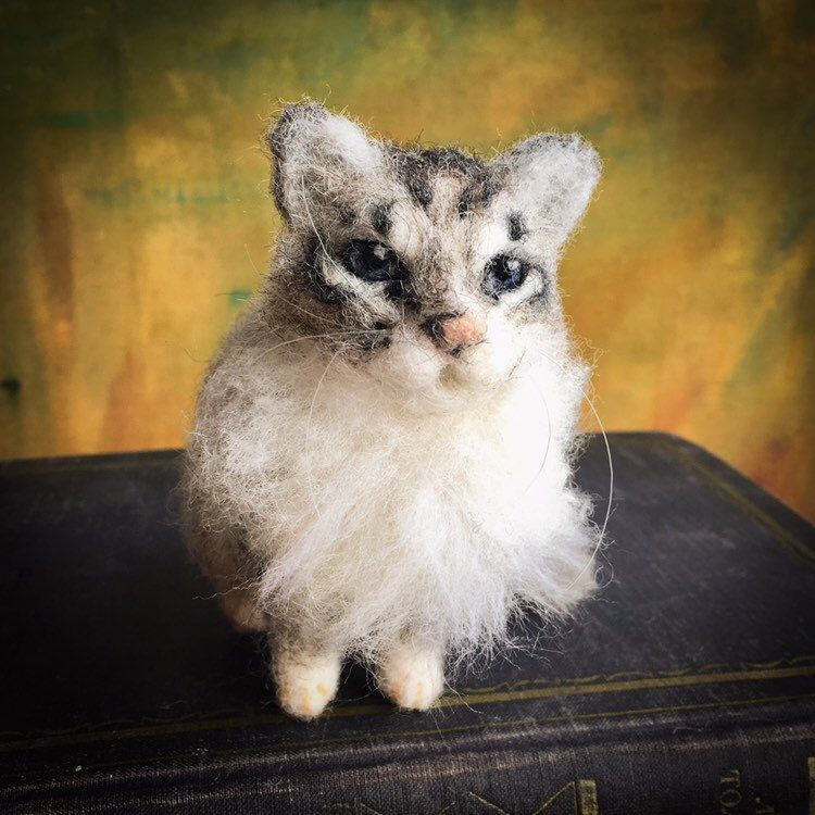 Needle felted cat custom, your cat replica, cat mums gift #needlefeltedcat Needle felted cat custom, your cat replica, cat mums gift #fiberart #thanksgiving #feltedcustomanimal #needlefeltedcat #catcustom #needlefeltedcat Needle felted cat custom, your cat replica, cat mums gift #needlefeltedcat Needle felted cat custom, your cat replica, cat mums gift #fiberart #thanksgiving #feltedcustomanimal #needlefeltedcat #catcustom #needlefeltedcat Needle felted cat custom, your cat replica, cat mums gif #needlefeltedcat