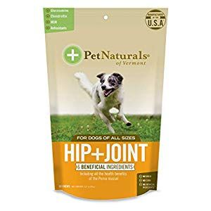 Pet Naturals of Vermont Hip + Joint for Dogs, Daily
