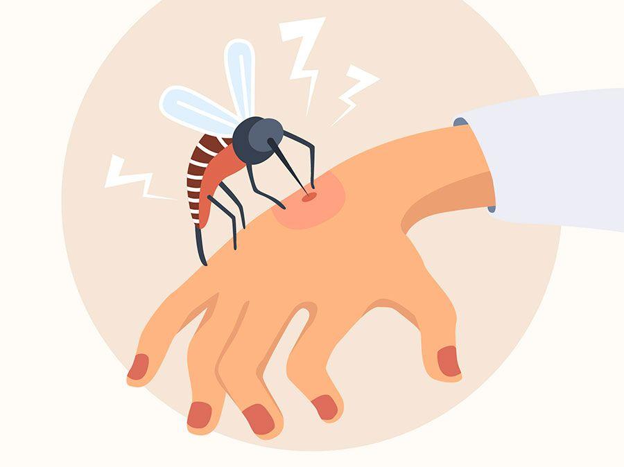 كيفية التخلص من البعوض اكتشف أفضل طرق طرد الناموس من المنزل وخطوات علاج قرص Kids Rugs Decor Rugs