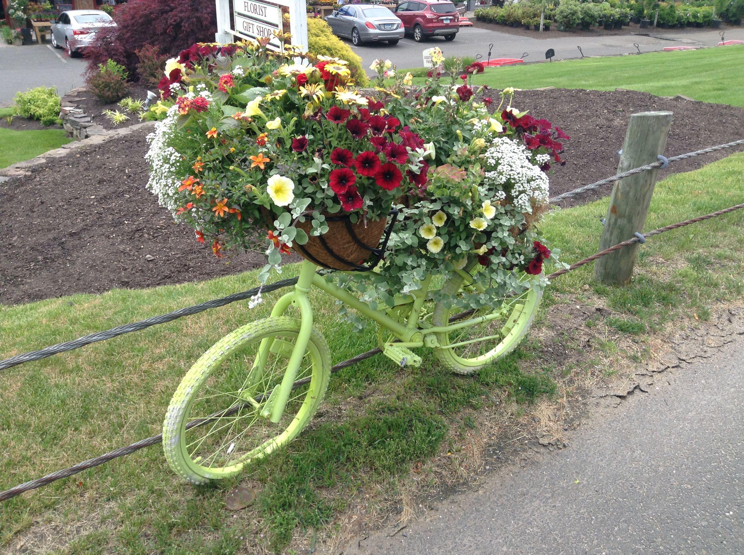 Garden decor bicycle  Pin by Riverside Nursery on Bikes  Pinterest