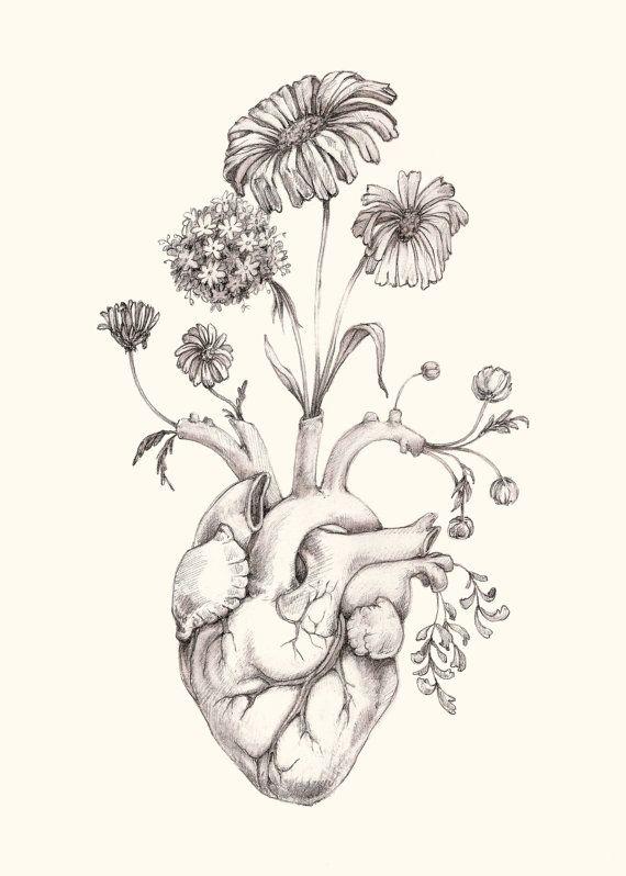 8x10 Print Of Original Drawing Blooming Heart Graphite Art
