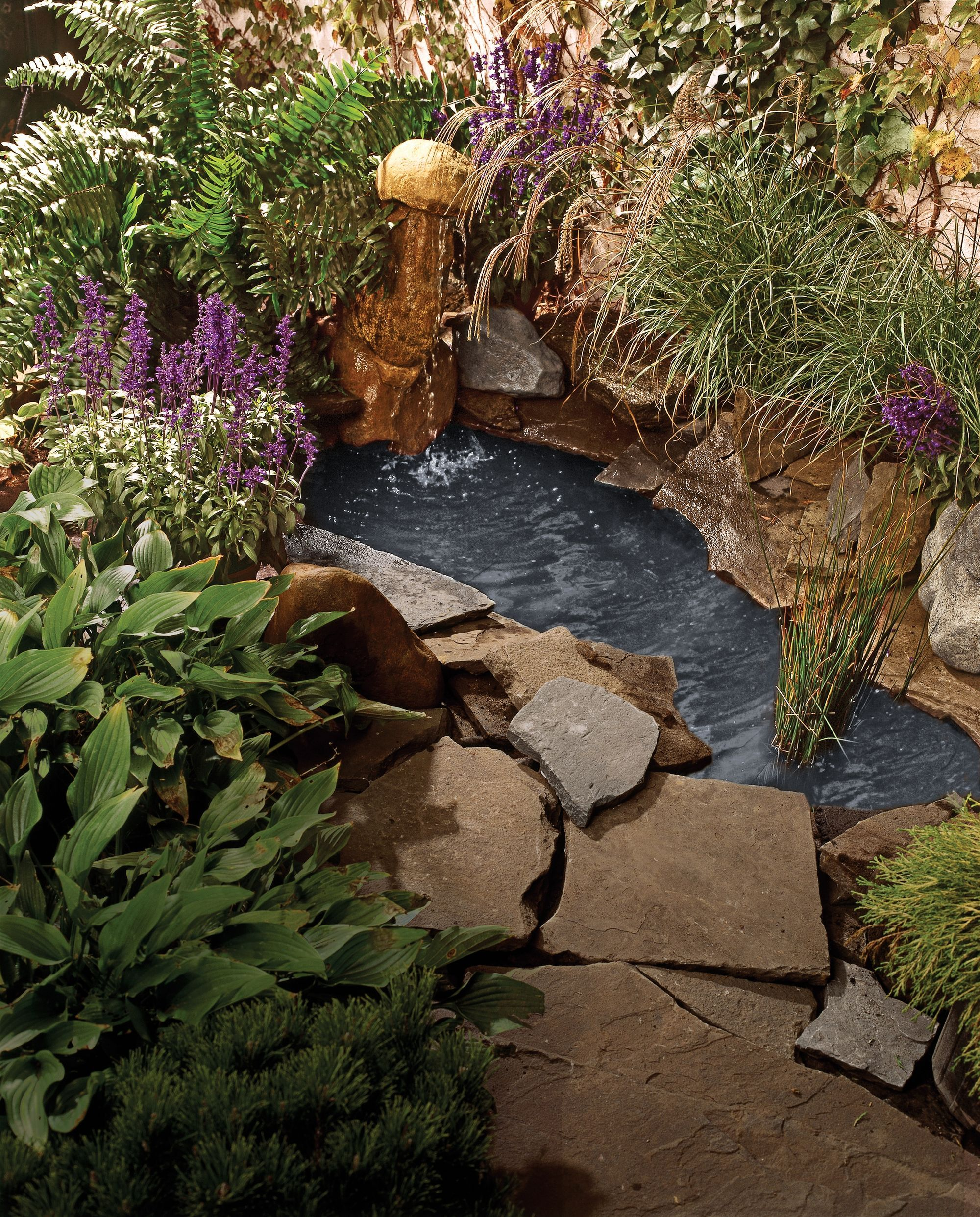 How to create a free-form backyard pond in just six hours# ...