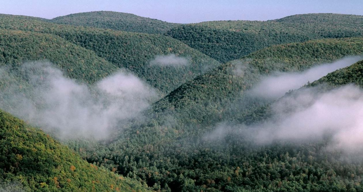Grand Canyon Pa Directions%0A     overlook of the lower Pine Creek Gorge in Although less traveled than  the upper gorge  this Vista offers a rivaled view of Pennsylvania u    s Grand  Canyon