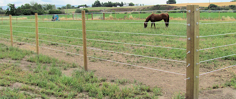 Finish Line Fencing Safe Horse Fencing Simply The Best