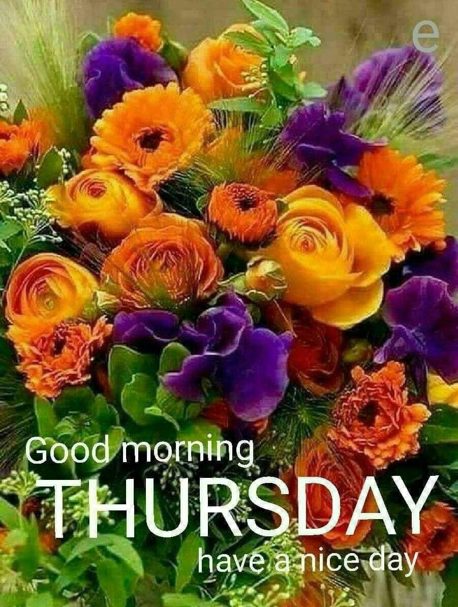 Good Morning Thursday Greetings | ดอกไม้, การจัดดอกไม้, ช่อดอกไม้