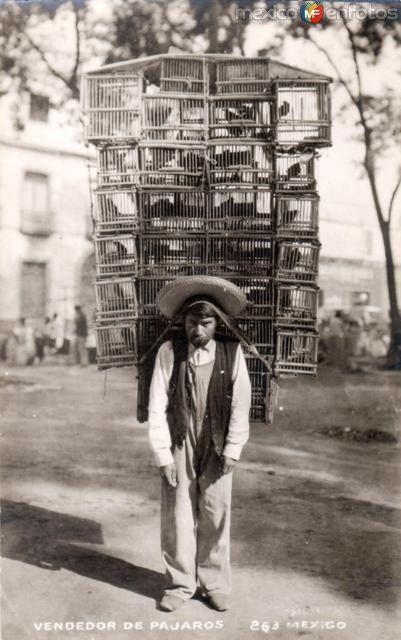 Ideales de la revolucion mexicana yahoo dating