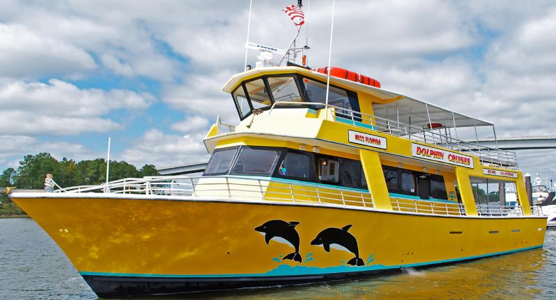 Gulf Ss Dolphin Cruises