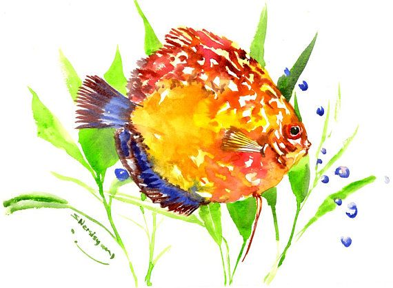 Yellow Discus Fish Red Yellow Flame Original Painting 12 X 9 In