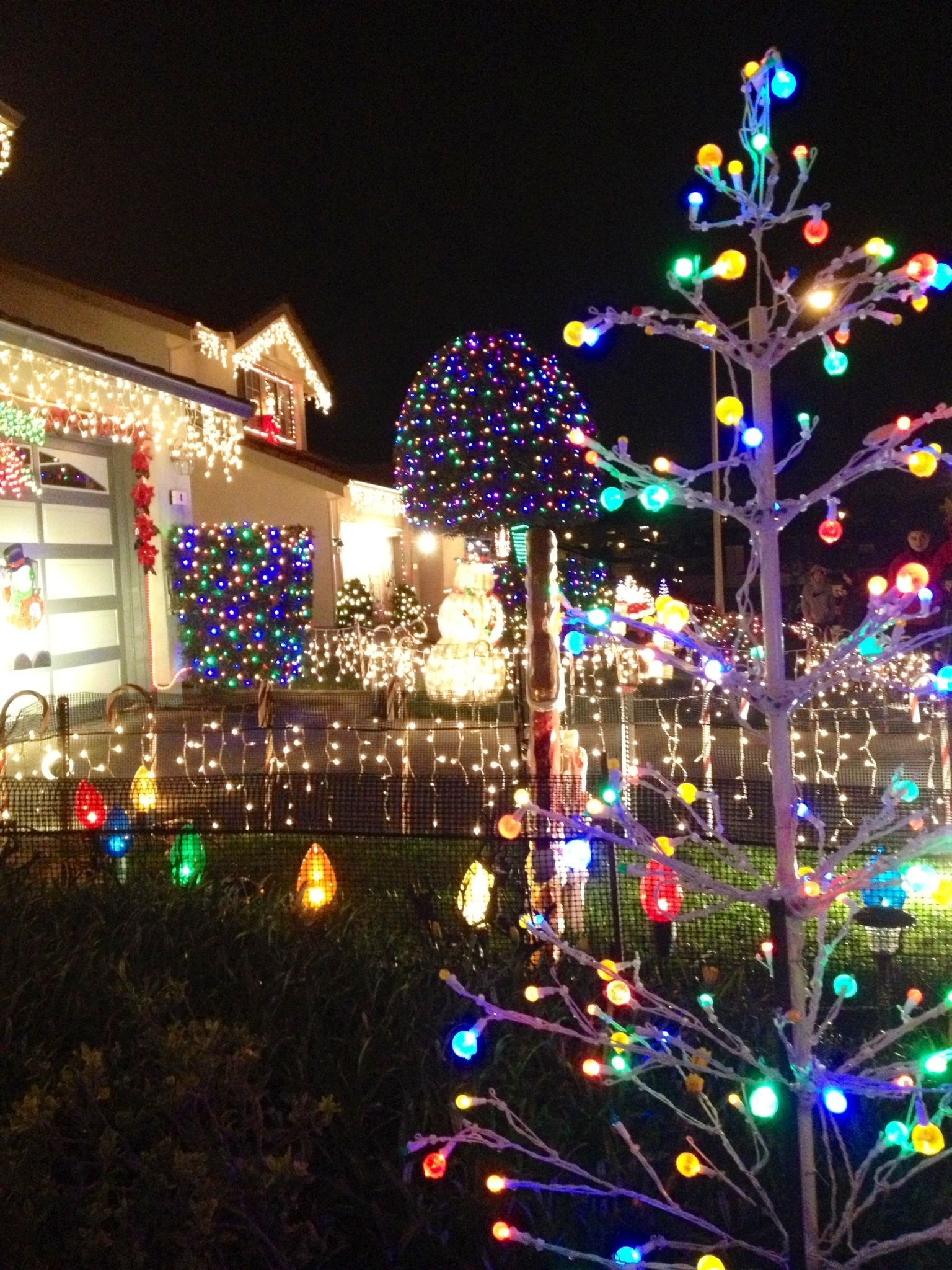 Christmas lights displays at Chestnut Ave in