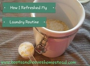 How I refreshed my laundry routine. Bootsandhooveshomestead.com