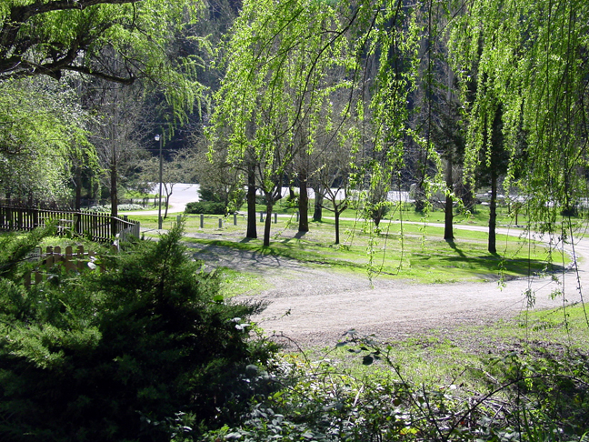Sleepy Hollow RV Park Willits CA Passport America Campgrounds
