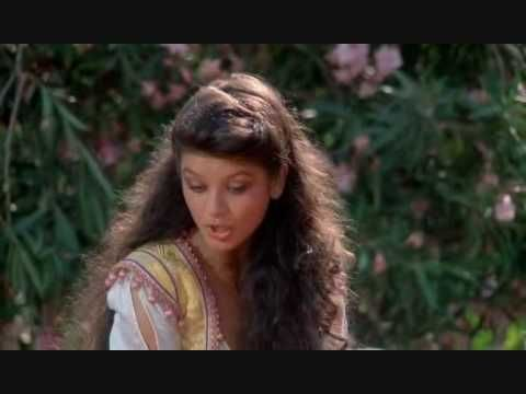 Catherine Zeta Jones 1001 Arabian Nights With Images Catherine