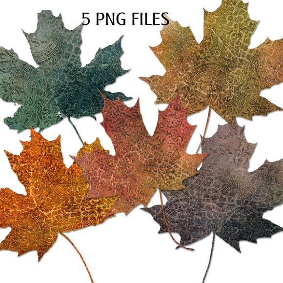 Grungy Autumn Leaf Elements - PNG. Objects. $3.00