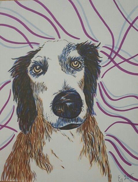 Custom pet portrait , marker drawing  Www.etsy.com/trulytrumanportraits
