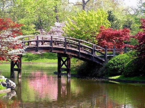 jardin japones patry paisajes Pinterest Gardens and Argentina - paisaje jardin