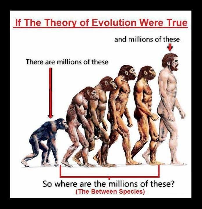Image result for image of a creationist missing link