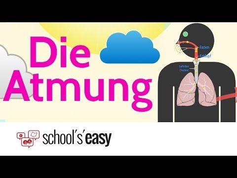 ▷ Die Atmung - Wie funktioniert\'s? (3:46) | C4 | Pinterest | Schule ...