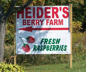 Fresh U-Pick Your Own Berries Heider's Berry Farm in ...